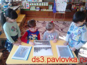 DSC_0564