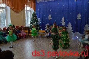 DSC_7019